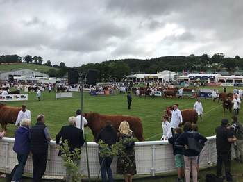 Royal-Welsh-Show_2019_009.jpg