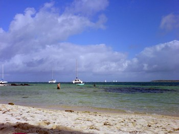 Philandsaifaleewedding Mauritius Oct To Nov 2006 Seta Colinmarkmatt 0000